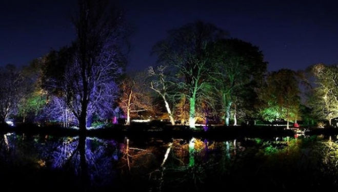 Syon Park Enchanted Forest Winter 2016 © Simon Hadleigh Sparks