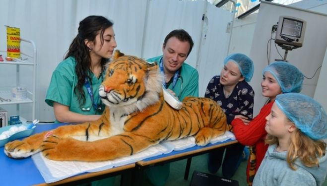Become a vet at London Zoo February half term