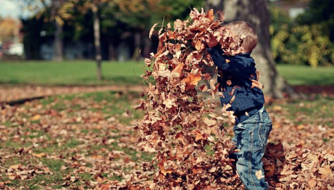 Back to school: best things to do with children this autumn