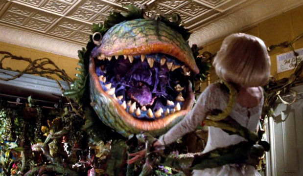 Coming to London: Little Shop of Horrors, film still
