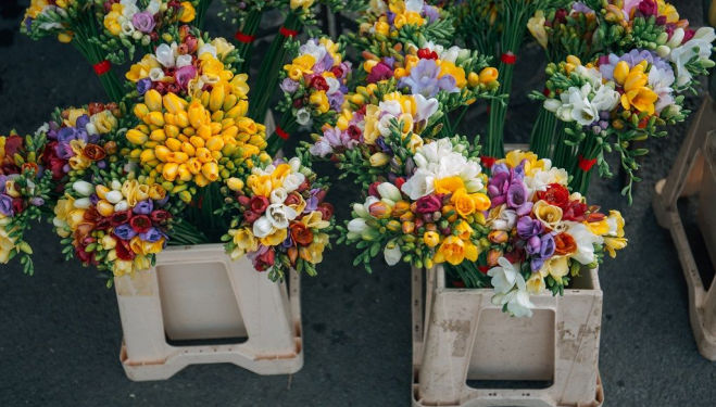 Don't forget to pick up a bouquet: Where to go on a date in London this spring