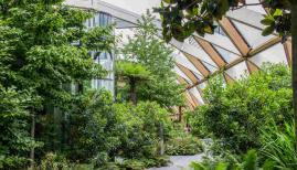 Open Garden Squares Weekend: Candy Blackham, Canary Wharf Roof Garden