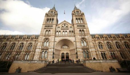 New theatre: Natural History Museum to stage Charles Darwin play