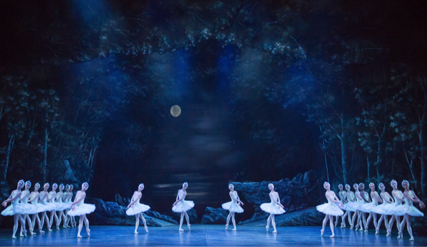 English National Ballet, Swan Lake, Coliseum