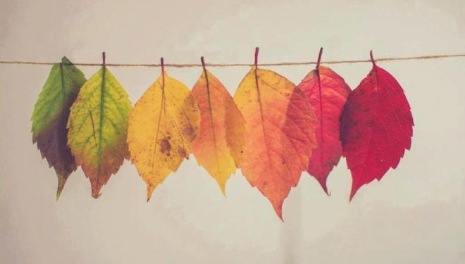 How to get a head start on autumn planning