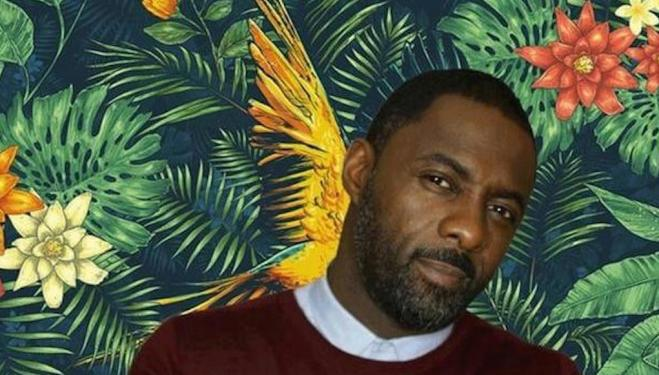 Idris Elba's new bar: The Parrot, Covent Garden