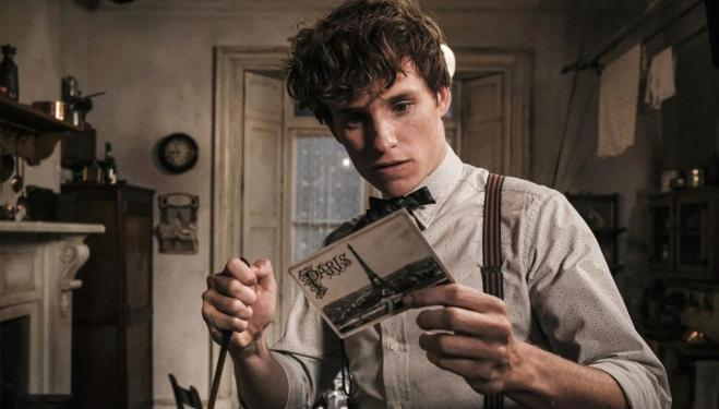 Eddie Redmayne returns as magizoologist Newt Scamander in Fantastic Beasts: The Crimes of Grindelwald