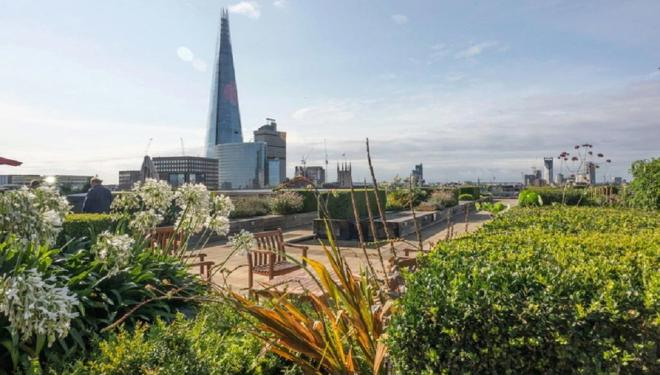 Unlock London's Secret Gardens
