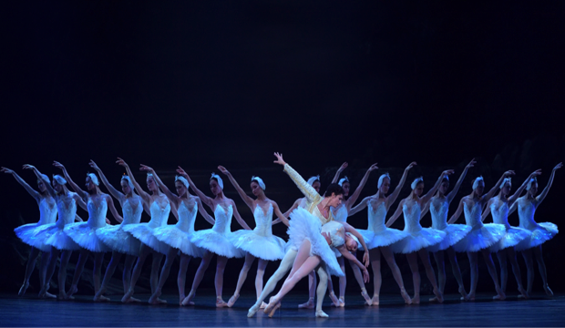English National Ballet in Swan Lake, photo Laurent Liotardo