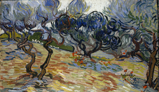 Van Gogh- Olive Trees. National Galleries of Scotland