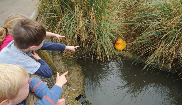 Easter fun at the London Wetland Centre