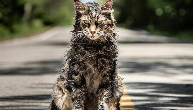 Pet Semetary: A new film adaptation of Stephen King's horror novel