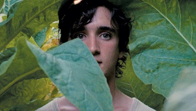 Adriano Tardiolo enchants the world in Happy as Lazzaro