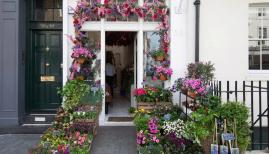 Belgravia In Bloom 2019