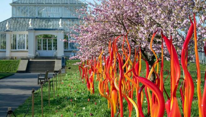 Dale Chihuly, Cattails and Copper Birch Reeds, 2015, Royal Botanic Gardens, Kew, London, installed 2019