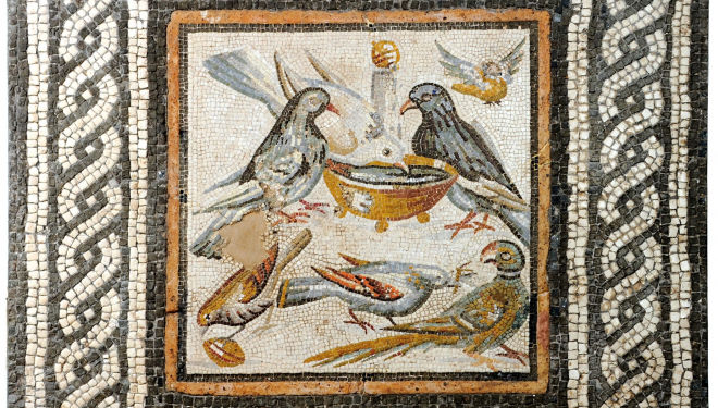 Doves (end of the 1st century BC to start of the 1st century AD) Mosaic 45 x 44.3 cm Courtesy: Soprintendenza Speciale per I Beni Archeologici di Roma