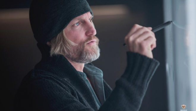 Woody Harelson in Mockingjay: Part 1.