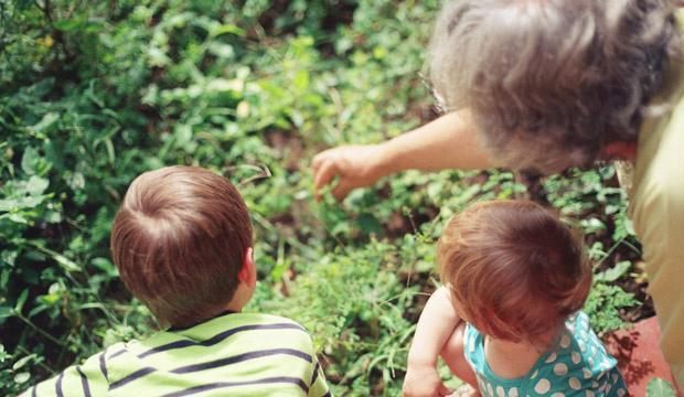 Accessible ideas for cultural bonding with the grandkids