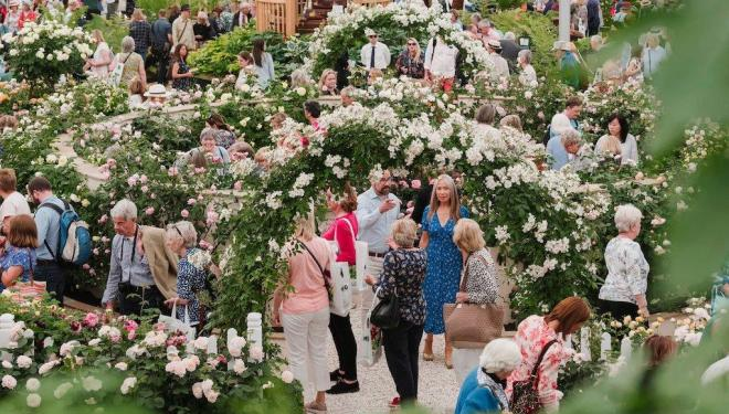 Tickets on sale now for RHS Chelsea Flower Show 2020