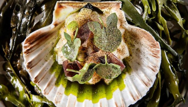 A plate of raw Orkney scallop, pear and sorrel at The Betterment