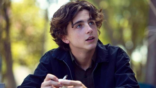 Timothée Chalamet in Lady Bird