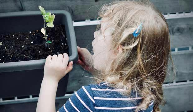 Gardening is a fun activity for the whole family - and one you can do at home. Photo: Jelleke Vanooteghem