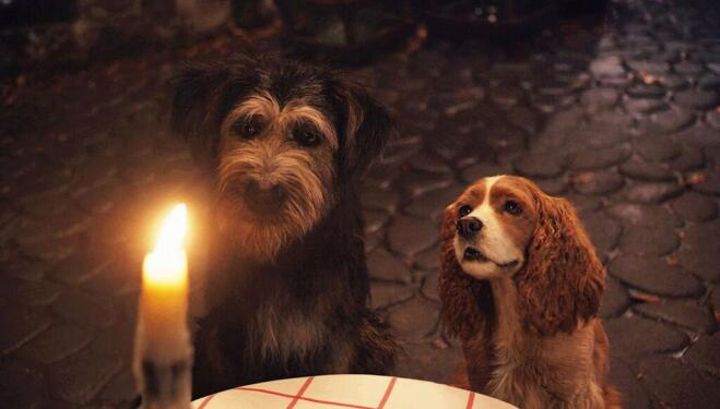 Lady and the Tramp: Tessa Thompson and Justin Theroux as eponymous Disney dogs