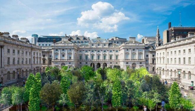 Forest of trees planted on Somerset House courtyard
