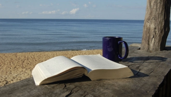 Summer Reading: The Best Beach Books 2015