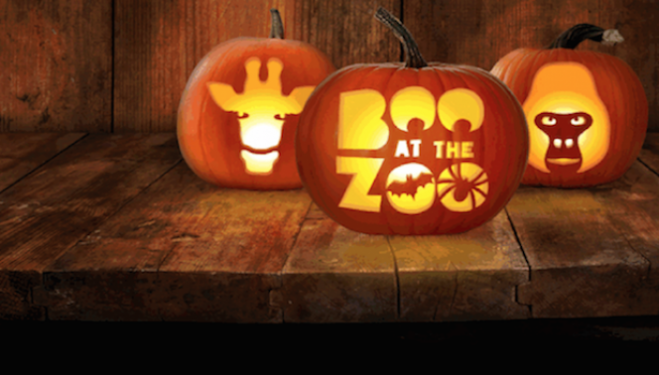 Boo at the Zoo, Halloween at London Zoo