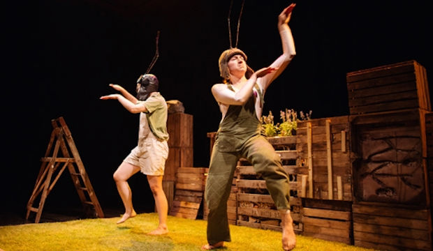 Grass, The Unicorn Theatre