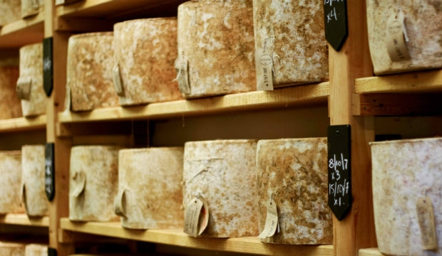 Cheesy: Neal's Yard Dairy annual cheese subscription