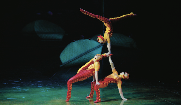Ovo: Cirque du Soleil, Royal Albert Hall