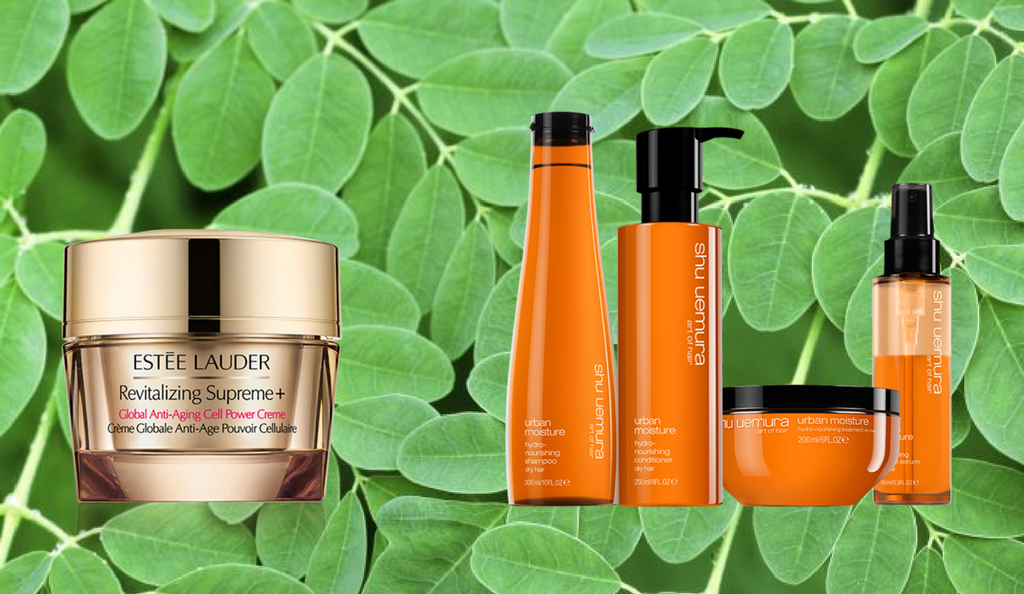 Moringa beauty products