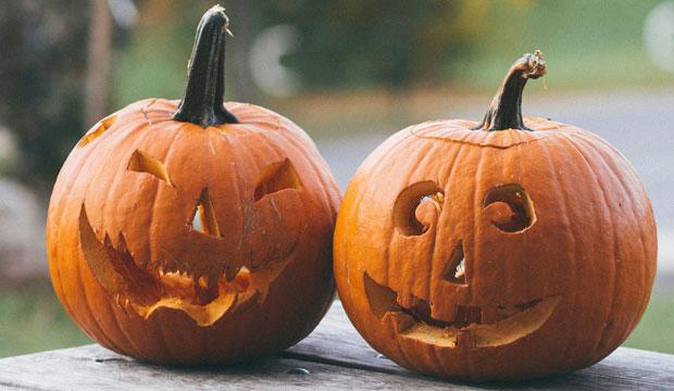 Best pumpkin patch for Halloween celebrations: Priory Farm