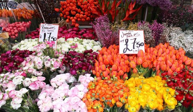 Columbia Road Flower Market, Bethnal Green