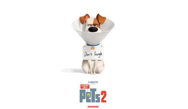 The Secret Life of Pets 2 gets to grips with the emotional side of our favourite pets. Credit: Illumination