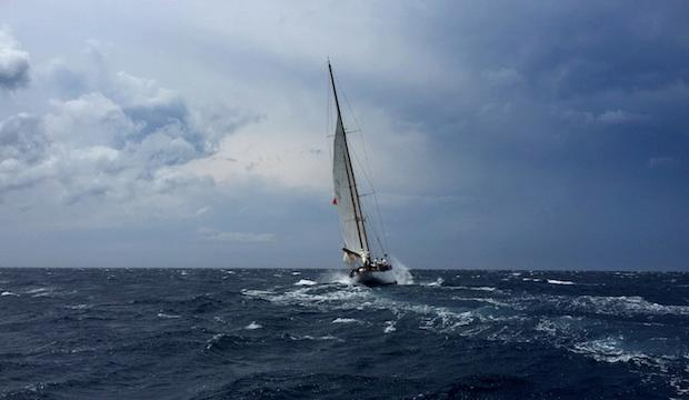 ​The Clipper Round the World Yacht Race, Global