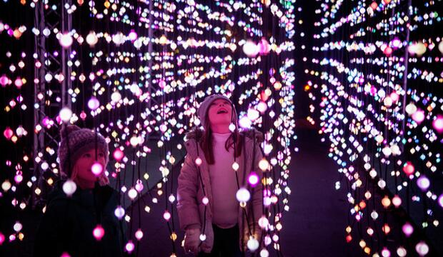 Christmas at Kew Gardens, Jeff Eden © RBG Kew