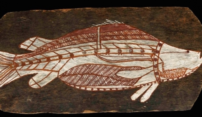 Bark painting of a Barramundi, Western Arnherm Land, about 1961.