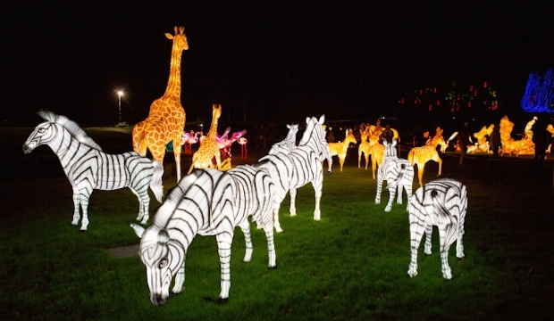 Chiswick House, Magical Lantern Festival
