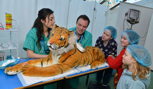 Vets in Action, ZSL London Zoo, February half-term 2018