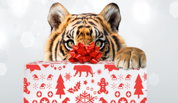Winter activities for families: Santa's grotto ZSL London Zoo