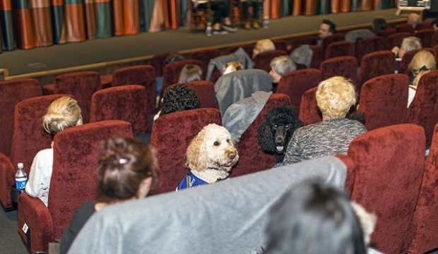 Picturehouse Central dog-friendly screenings